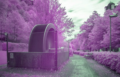 Infrared Photographie
