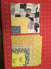 Bee blocks for Carolyn