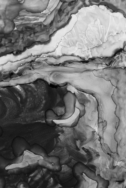 Landscape (Monochrome Detail), Sony DSC-RX1R, 35mm F2.0