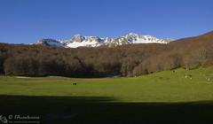 Monte La Meta (PNALM)