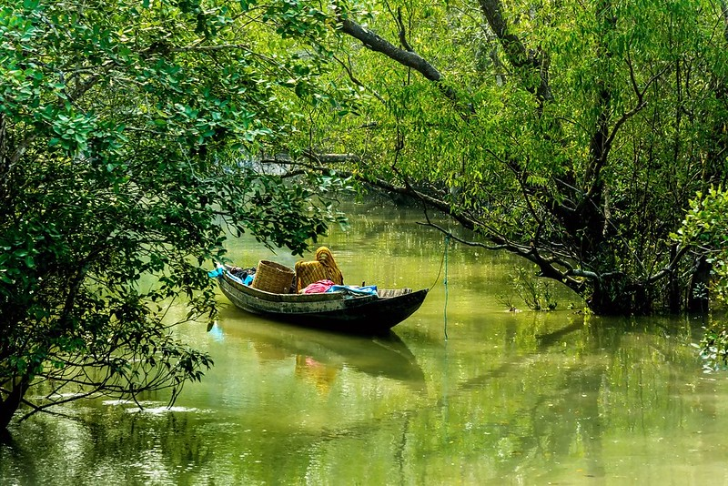 Sundarban-Tour-and-Kolkata-Tour