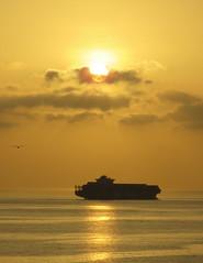 Rising Sun Dawn