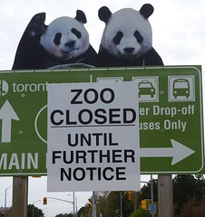 zoo closed - support cupe 1600