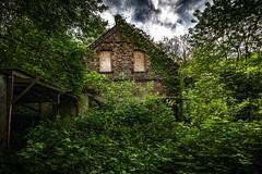 Maison Toomy