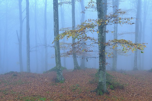 Italy, autumn moods