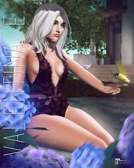 NEW! Valentina E. Astrid Lace Bodysuit Gacha @ Whimsical!