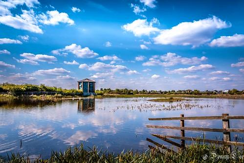 londonwetlandcentre landscape reflection cloud
