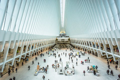 Oculus, New York City