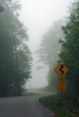 mist nebel landscape trees northcarolina