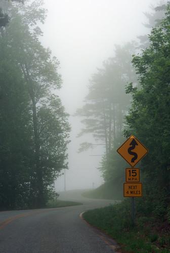 mist nebel landscape trees northcarolina