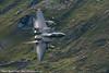 McDonnell Douglas F15C Grim Reaper
