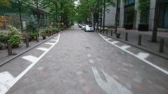 Outdoors City Tree Street Cycling Urban