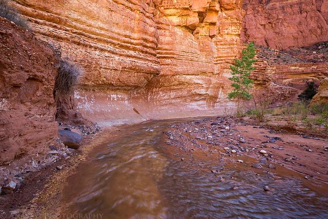 Sulphur Creek & Pleasant Creek
