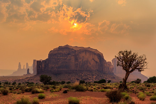 sunset rock monumentvalley tree landscape usa kayenta arizona étatsunis us