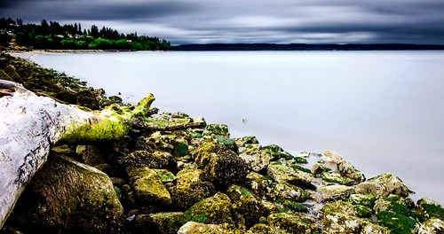 howarthpark landscape possessionsound longexposure storm seaweed trinterphotos shoreline beachlog