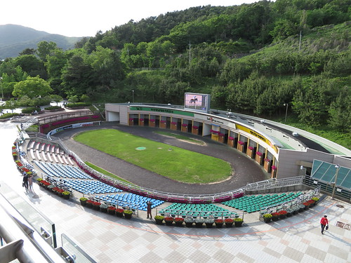 釜山慶南競馬場のパドックを上から見下ろす