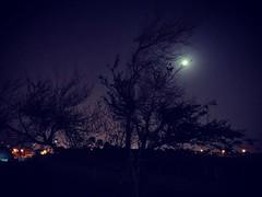 Night run #walk #crawl #run #destress #moon #mood #music #instagram #instagood #instagramhub #instalikes #instalife #instagramer #instadaily #instafollow #instablogger #instabahrain #ig_bahrain #ig_bahrain_ #bahrain #running #runbabyrun #sweat #follow4fol