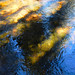 Yellowstone National Park, Abstracts