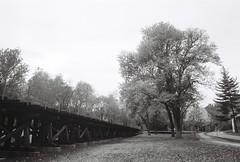 Shenandoah Trestle