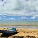 Small photo of Alagoas