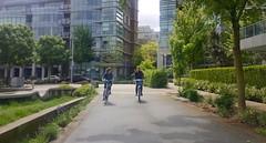 Seawall Bike Ride