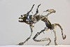 Sculpture from recycled metal Daemon