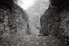Shenandoah Pulp Mill Ruins