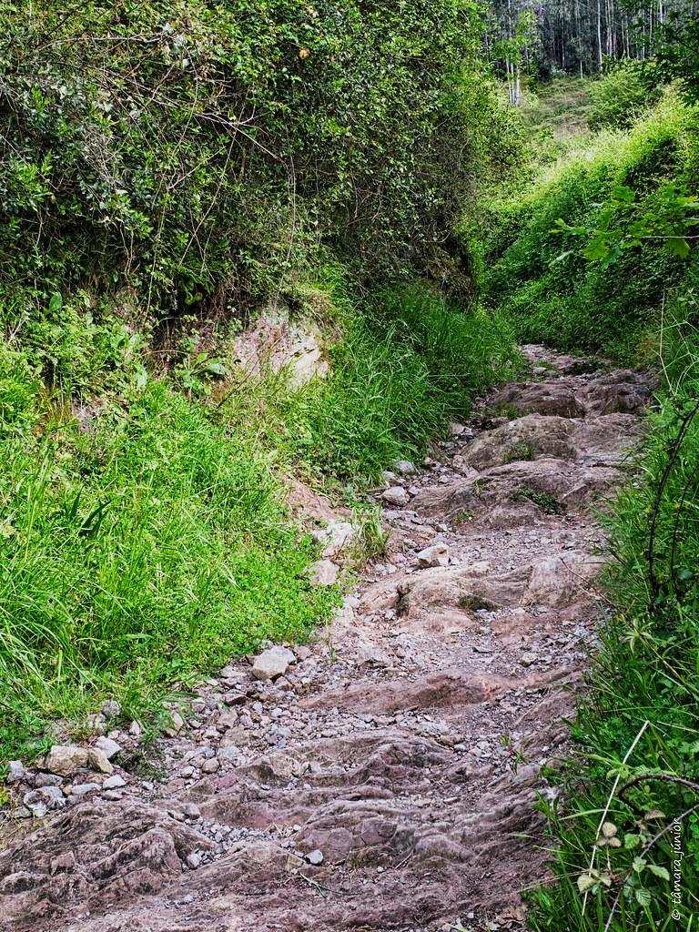 25.- Camino del Salvador-8ª etapa (242)