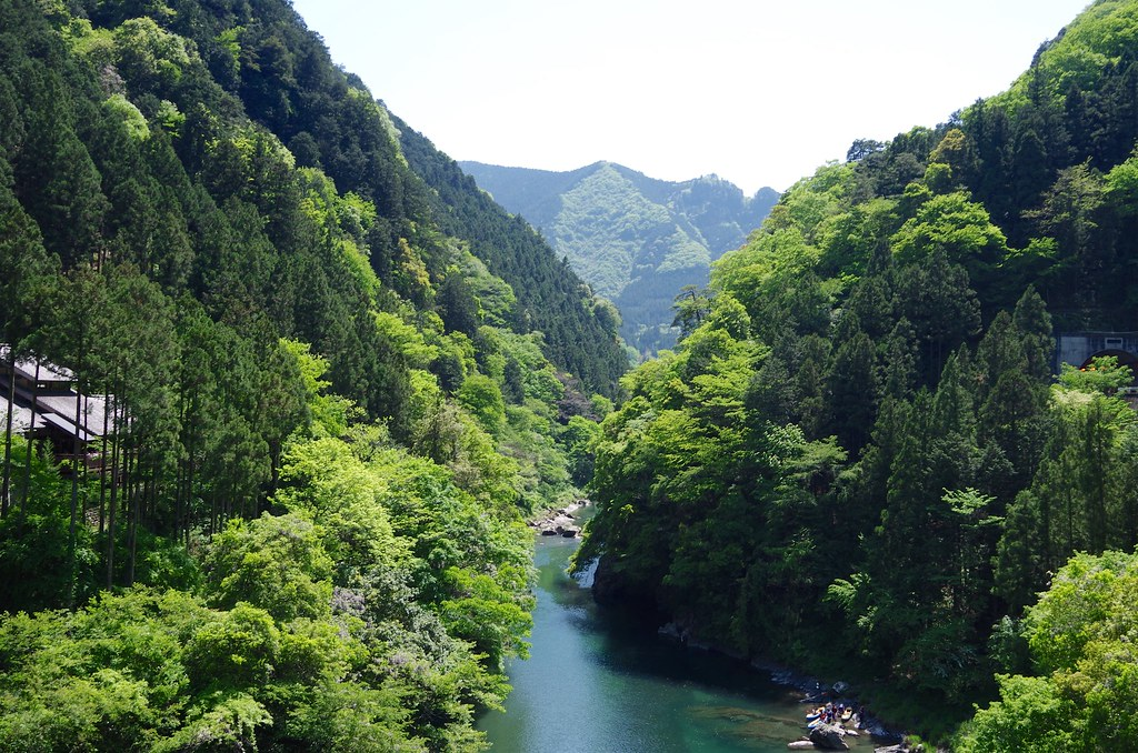 20140510_Mt.Kumotori 029