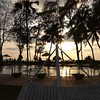 The Sunset #silhouette #swimming #trees:deciduous_tree: #sunset:sunrise: #coconuttrees