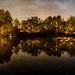 . : a night @ the lake : .