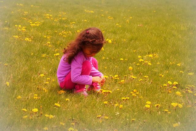 Flower Child, Sony SLT-A58, Tamron 16-300mm F3.5-6.3 Di II PZD