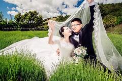 💖Lovely day! Lovely couple!💖Photography by Linda Liu #LindaWeddingPhotography ##SanFranciscoWeddingPhotographer##WeddingDressRental##BridalMakeUp#https://www.facebook.com/LindaPhotographyInSf/ Wechat: Lindaliuzr8899  lindal