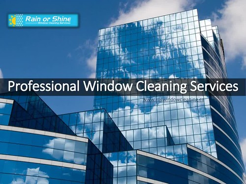 Professional_Window_Cleaning_Services