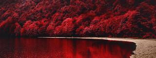 Patagonia Red