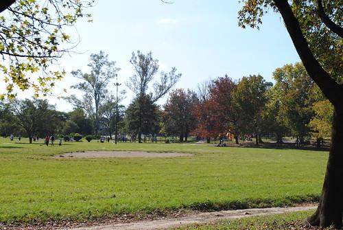 Parque Guillermina