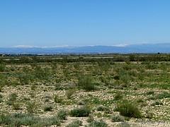 Spain; LLeida drylands, 3/4/17.