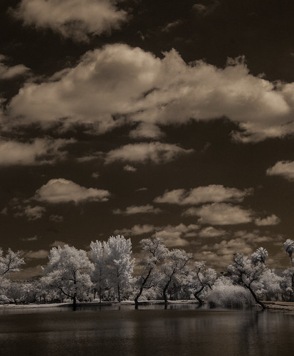 santeelakes convertedinfraredcamera infrared ir water trees clouds sky highcontrast composition