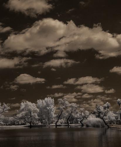 santeelakes convertedinfraredcamera infrared ir water trees clouds sky highcontrast composition