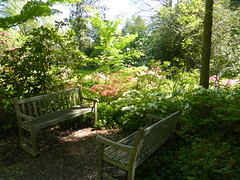 Planting Fields Arboretum - Oyster Bay (2)