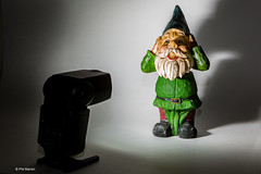 Torturing gnomes with a remotely triggered  Speedlite 430EX