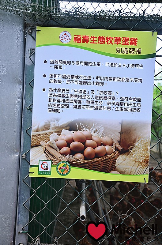 南投:福壽生態農場