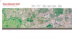 3D plan oblique from Lidar first returns