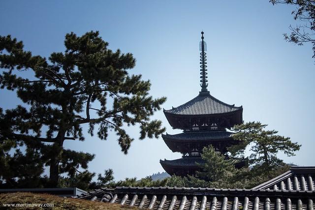 Kōfukuji Five Storied Pagoda, Nara
