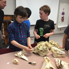 Skulls and Science with Dave Mazierski