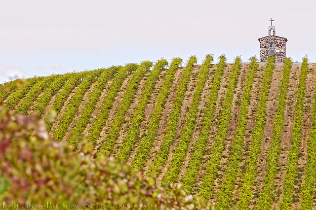 WEDDING CHAPELS and VINEYARDS, Canon EOS 5D MARK III, Canon EF 70-200mm f/2.8 L