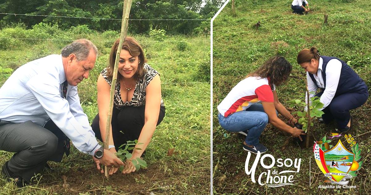 Alcaldía celebra Día del Árbol con actividad de reforestación
