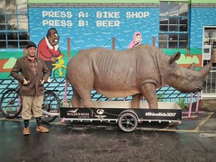 Of man and a life-size rhino sculpture on a bike trailer. #selfportrait #rhinoride