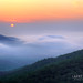 Misty Mountain Morning by Larry W Brown