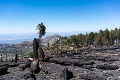1705 Shovel Fire Burn